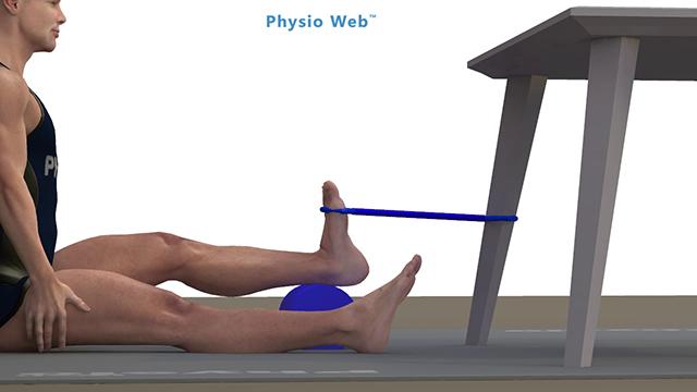 exercice body leg